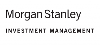 morgan stanley global opportunity